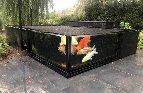 Glazen zwemvijver koikarpers, Almere